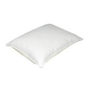 Ecologic Dual Sided Pillow