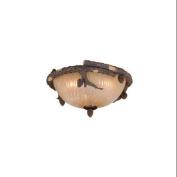 Two Light Ceiling Fan Light Kit