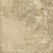 DuraCeramic 40cm x 40cm Rapolano Vinyl Tile in Bisque