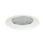 Fresnel 1 Light Shower Trim