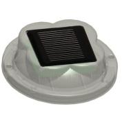 Solar LED Dock Light