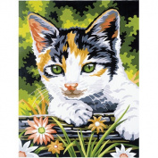 Reeves Kitten Acrylic Painting Set by Numbers, Medium