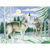 Watercolour Pencil By Numbers Advanced Large Wolves Watercolour Pencil