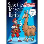 Save The Drama For Your Large