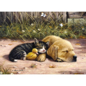 Painting by Numbers Junior Large Sleepy Day Set