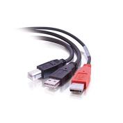 C2G / Cables to Go 28108 USB 2.0 B Male to 2 USB A Male Y-Cable