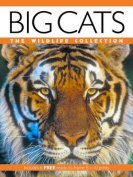 Big Cats (Wildlife Collection)
