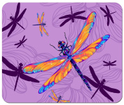 Rainbow Dragonflies Mouse Pad from Redeye Laser works