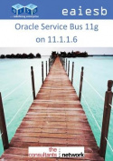 Oracle Service Bus 11g on 11.1.1.6