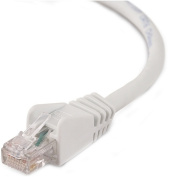 Belkin - Cat6 Patch Cable - Grey