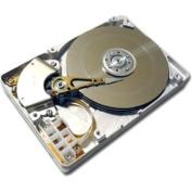 Total Micro - 100 GB Internal Hard Drive