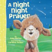 A Night Night Prayer [Board Book]