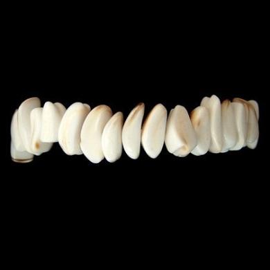Shell Nugget Bracelet (Elasticated)
