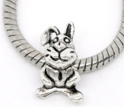 Believe Beads © 1 x 'Floppy the Rabbit' Silver Tone Charm Bead will fit Pandora/Troll/Chamilia Style Charm Bracelet-Ideal Easter Gift