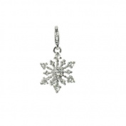 Charm snowflake in steel by Charming Charms. up to 30