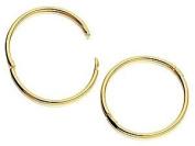 9ct Gold Hinged Hoop Earrings - 15mm