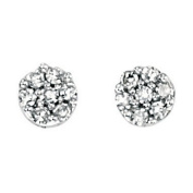 Elements Gold Elements Diamond Small Stud Earrings Studs 9Ct White Gold Round New
