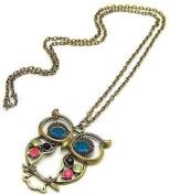 Vintage Antique Vintage Retro Art Deco Style Colourful Owl Carved Hollow Chain Necklace J006