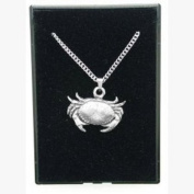 Cancer Star Sign Pendant Necklace in Pewter, Lovely Gift, Supplied in Organza Bag