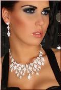 Sexy Women's Rhinestone Necklace & Earrings Set Jewellery Accessory