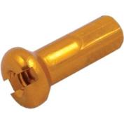 DT Swiss Spoke Nipple Alloy 14G 2.0mm Gold Box/100