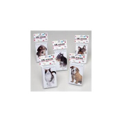 MEMO BOOKS 60 SHEETS 3X5 S/4 DOG & CAT COVERS STAT PBH, Case Pack of 36