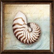 Pro Tour Memorabilia Seashell Framed Artwork