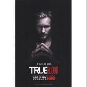 True Blood - Season 2 - Alexander Skarsgard [Eric] Movie Poster