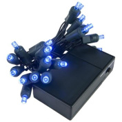Wintergreen Lighting 19258 20 Battery Operated Blue 5mm LED Lights, Green Wire