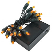 Wintergreen Lighting 19261 20 Battery Operated Amber 5mm LED Lights, Green Wire