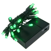 Wintergreen Lighting 19259 20 Battery Operated Green 5mm LED Lights, Green Wire