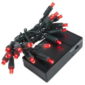 Wintergreen Lighting 19260 20 Battery Operated Red 5mm LED Lights, Green Wire
