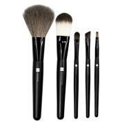QVS Professional Brush Set