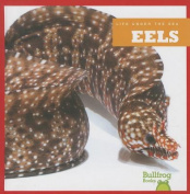 Eels (Life Under the Sea)