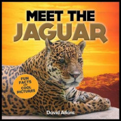 Meet the Jaguar