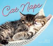 Cat Naps Daily Calendar