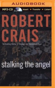Stalking the Angel  [Audio]