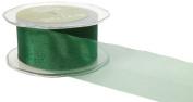 May Arts 5.1cm Wide Ribbon, Green Sheer