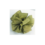 Two Toned Silky Ribbon Pear Green 3.8cm X 25 Yds Spool