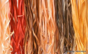 New 7mm Size ThreadNanny 6 Spools of 100% Pure Silk Ribbons - Brown Tones - 60 mts x 7mm
