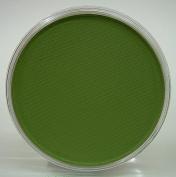 PanPastel Chromium Oxide Green 660.5