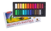 Non Toxic Soft Pastel Set of 24 Assorted Colours Square Chalk