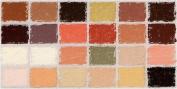 Diane Townsend Soft Pastels- Set of 24 Flesh Tones