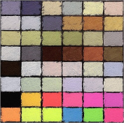Diane Townsend Soft Pastels- Set of 48 Exotic Colours