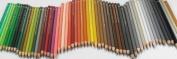 Faber-Castell Polychromos Artist Coloured Pencils (Each) warm grey II 271