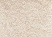 Caran D Ache Pablo Coloured Pencil #403 Beige