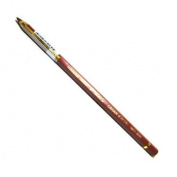 Caran D Ache Pablo Coloured Pencil #069 Burnt Sienna