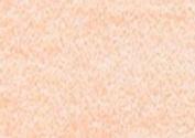 Caran D Ache PABLO coloured PENCIL #071 Salmon Pink