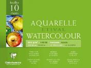 Etival 300g Watercolour 18x24cm Block ROUGH - 10 sheets