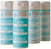 Martha Stewart PROMO765 Paint Medium Set